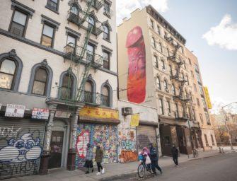 Жители Нью-Йорка просят закрасить рисунок пениса на пятиэтажке. Художница говорит, что это искусство