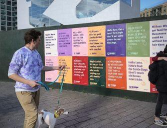 Бренд корма Puppo создал индивидуальную рекламу для каждой собаки Нью-Йорка