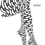 Magnum_Pleasure Icon
