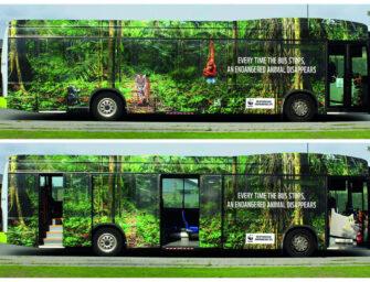 WWF рассказал о скорости исчезновения животных с помощью автобуса