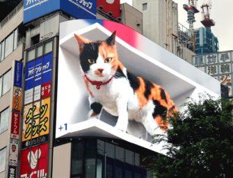 Велетенська 3D-кицька оселилася на рекламному екрані в Токіо